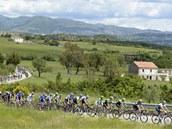 Peloton se prod�r� krajinou v �est� etap� cyklistick�ho Gira d'Italia.