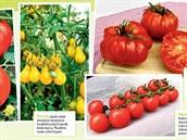 V příloze si můžete vybrat z 19 odrůd rajčat.