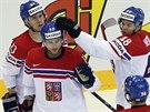 G�L NAD�JE. �esk� hokejista Vladim�r Sobotka sn�il v utk�n� s Franci� na 1:3.