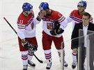 OT�ESEN�. Hokejov� �to�n�k Vladim�r Sobotka dostal ve �tvrtfin�le MS tvrdou...
