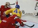 �v�dsk� hokejista Nicklas Danielsson pr�v� d�v� g�l ve �tvrtfin�le MS dom�c�mu...