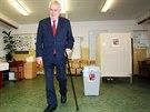 Prezident Milo� Zeman ve volebn� m�stnosti v Z� Brdi�kova na pra�sk�ch Lu�in�ch.