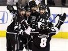 Gólová radost hokejistů Los Angeles.