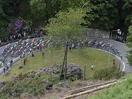 PELOTON. Cyklist� ve 14. etap� z�vodu Giro d'Italia.