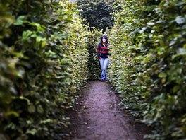 Labyrint v Brandýse nad Orlicí