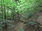 ŠUTR54, to je především krásná příroda, která dovede být pro běžce náročná.