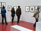 Záběr z velké pařížské retrospektivy Henriho Artier-Bressona