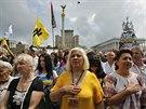 Demonstrace za jednotu Ukrajiny v Kyjev�  (31. kv�tna 2014)