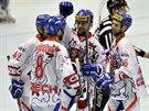Čeští inline hokejisté se radují z gólů v duelu o 5. místo s Velkou Británií.