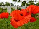 Vlčí mák je symbolem válečných veteránů. Fotografie je z vojenského hřbitova u...