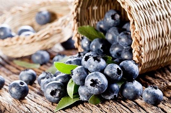 Maliny a borůvky plné vitamínů ze Subtropického zahradnictví Kruh