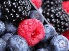 Maliny a borůvky plné vitamínů nabízí Subtropické zahradnictví Kruh