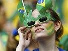 Fanynka Brazílie