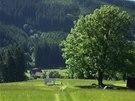 A když už jste v dolině, můžete se kochat zelenou trávou a ovečkami.