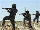 Iráčtí vojáci hlídkují na hranicích provincií Karbala a Anbar (16. června 2014).