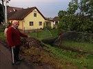 Hasiči odstraňovali na Vysočině kvůli bouřkám několik vyvrácených stromů. (11....