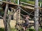 Po instalaci nových lan a sítě bylo potřeba, aby chovatelé  vyzkoušeli jejich...