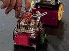 Takhle vypad� robotick� sumo.