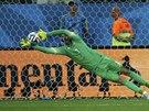 Chorvatský brankář Stipe Pletikosa málem chytil Neymarovu penaltu. Na míč si...