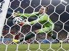 Ruský brankář Igor Akinfejev chce napravit chybu, ale míč před brankovou čáru...
