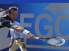 Radek Štěpánek čelí v Londýně britské hvězdě Andymu Murraymu.