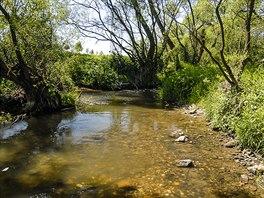 Řeka Blanice