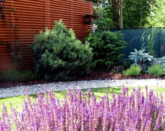 V zahradě stále něco kvete, rychle rostoucí jehličnany dělají majitelce také