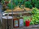 K čemu pěstovat vlastní zeleninu zamořenou chemií.