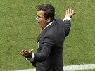 Kostarický kouč Jorge Luis Pinto nechápe, jak to, že rozhodčí nepískl penaltu...