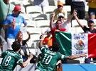 Mexický útočník Giovani Dos Santos (č. 10)slaví gól proti Nizozemku v...