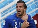 POD�VEJTE, KOUSL M�! Italsk� obr�nce Giorgio Chiellini si st�uje na...