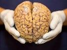 Touha po novém poznání může někdy vést vědce k manipulaci s lidmi.