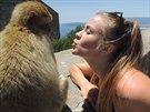 Závodnice Veronika s opicí na Gibraltaru