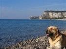Na oblázkové pláži u Sistiana Mare