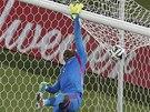 JIŠTĚNÍ. Nigerijský gólman Vincent Enyeama hlídá dopad míče na horní síť.