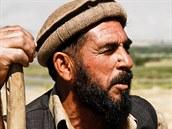 Farmář v afghánském Bagrámu