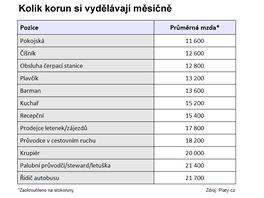 Kolik korun si vydělávají měsíčně