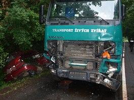 Při dopravní nehodě mezi obcemi Myštěves a Sukorady na Jičínsku zemřela řidička...