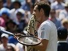 Britskému tenistovi Andymu Murraymu se ve čtvrtfinále Wimbledonu proti...