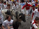 Při běhu s býky ve španělské Pamploně se zranili čtyři lidé