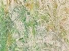 Obraz Otto Plachta inspirovaný peruánskou džunglí