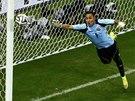 TYČ. Střela Nizozemce Sneijdera z přímého kopu přistála na bráně kostarického