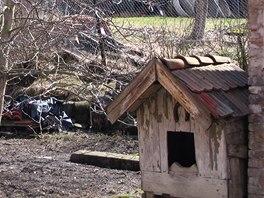 Psí bouda a její okolí v roce 2006
