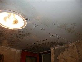 Dnešní stav interiéru po půl roce. Plíseň se neustále objevuje.