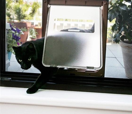 Na návrat do bytu nemusí kočka čekat.