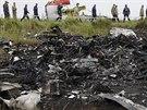 Oblast pádu malajsijského letadla (18. července 2014).
