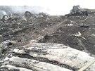 Trosky letounu malajsijsk�ch aerolinek s 295 lidmi na palub�, kter� se z��til...