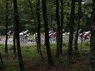 HLUBOKO V LESE. Peloton v deváté etapě Tour de France.