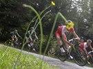 ZAKRYTÝ KVĚTINOU. Nicolas Edet ve sjezdu v deváté etapě Tour de France.