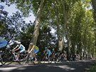 MILOSRDN� ST�N. Vincenzo Nibali ukryt� v pelotonu ve dvan�ct� etap� Tour de